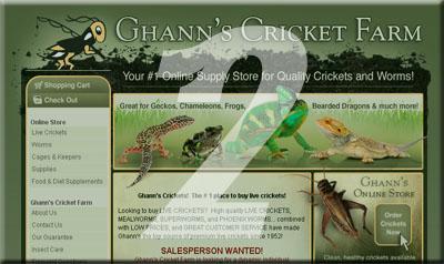 Ghann's Cricket Farm