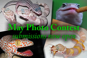 May Photo Contest Submissions