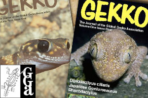 The Global Gecko Association: Then and Now