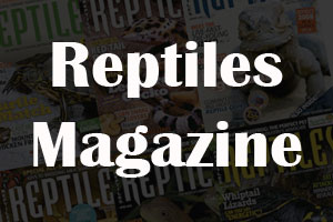 Review: Reptiles Magazine
