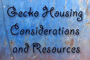 Gecko Housing Considerations and Resources