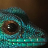Breeding Lygodactylus williamsi