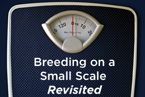 Breeding on a Small Scale Revisited