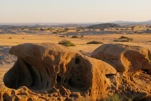 Conservation Biology in Namibia
