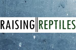 "Introducing ""Raising Reptiles"""