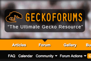 Reptile Forum Profile: Geckoforums.net