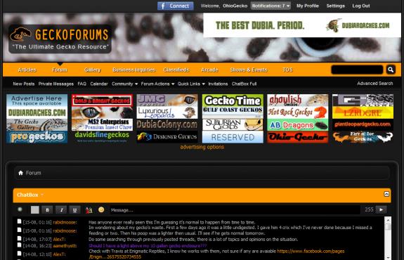 geckoforums.net 2014-8-15 18 3 22