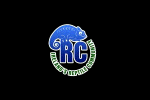 Reptile Forum Profile: Reptile-Community, an Irish Forum