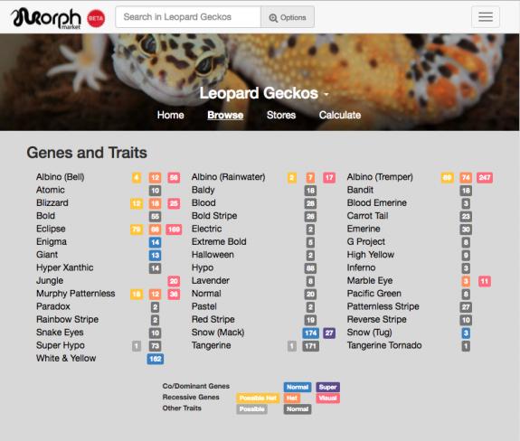 MorphMarket Index of Leopard Gecko Traits