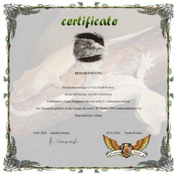 CertificateAuth